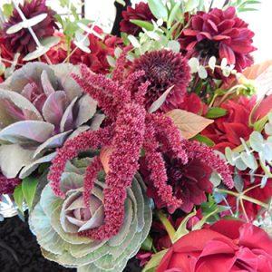 ar pontius flower shop 3 20180913 2089813634