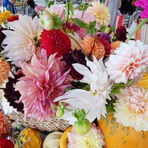 ar pontius flower shop 4 20190913 1621048152