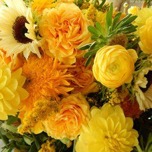 monarch garden and floral design a 3 20190913 1886293176
