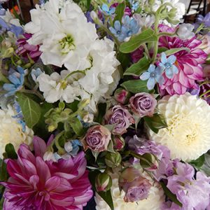 monarch garden and floral design b 5 20190913 1434136640