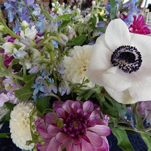 monarch garden and floral design b 6 20190913 1130040424