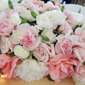 vilah bloom zonta of petoskey 5 20190913 1501523592
