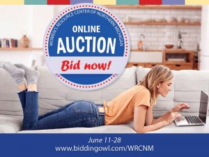 Online Auction 2020